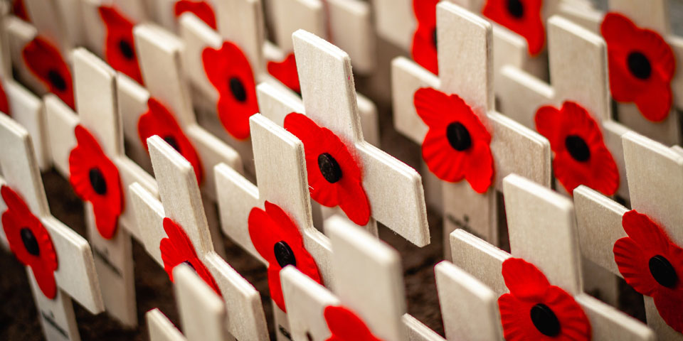 Paper poppies on wooden white crosses.